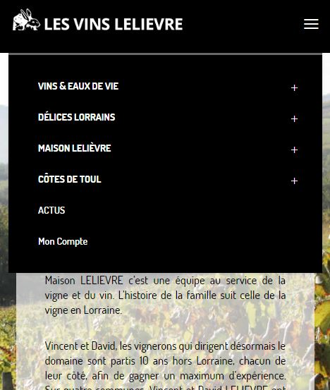 Site Vins Lelièvre version mobile